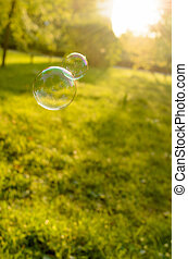 Soap bubbles floating on a green lawn.