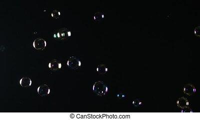 Soap bubbles on a Black Background.