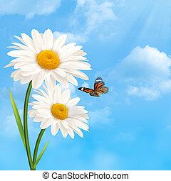 sob, a, azul, skies., abstratos, natural, fundos, com, margarida