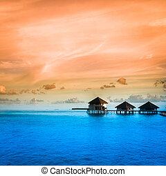 sobre, bungalows, água, espantoso, passos, lagoa, verde