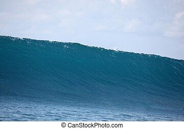 sobre, coral, superficial, -, gigante, onda, interrupción, indonesia., arrecife, islas, mentawai, vacío