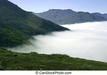 sobre, el, niebla