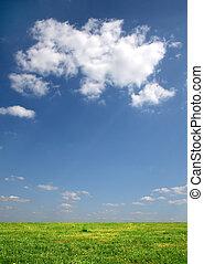 sobre, nuvens, prado