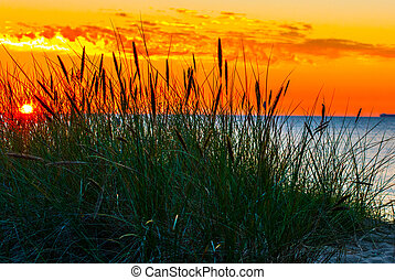 sobre, pôr do sol, mar