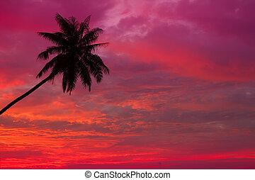 sobre, pôr do sol, oceânicos