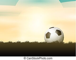 Soccer ball / football nestled in grass