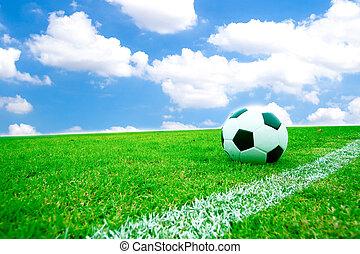 Soccer ball in grass.