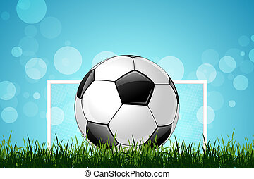 Soccer Ball in Green Grass
