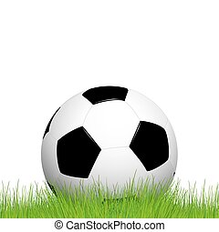 soccer ball lying in the grass