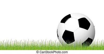 soccer ball lying in the grass