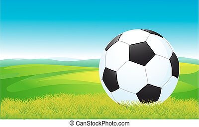 soccer ball lying on the grass - ve
