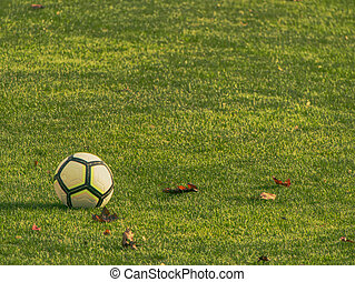 Soccer ball, marker cones and bottle water on green turf - ...