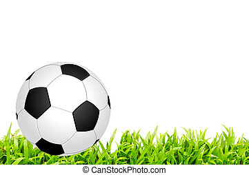Soccer ball on a white background
