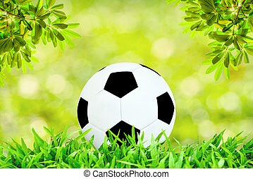 Soccer ball on green field with sunny day with selective focus and defocus background.