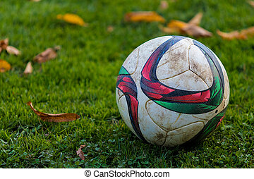Soccer ball on green grass, copy space