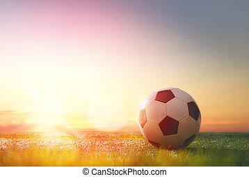 ball on green grass