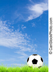 soccer ball on green grass with blue sky background