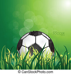 soccer ball on the field background