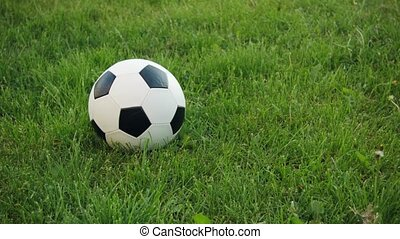 Soccer ball on the field with natural grass