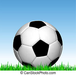 Soccer ball on the grass. Vector football