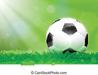 Soccer ball on the pitch - Detailed soccer ball on lush...