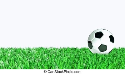 soccer ball rolled into the frame for use in presentations,...