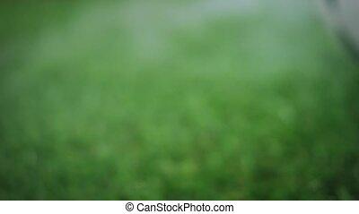 Soccer ball rolls in a fog slowly - Ball for football rolls...