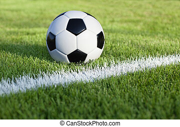 Soccer ball sits on grass field with white stripe - A...