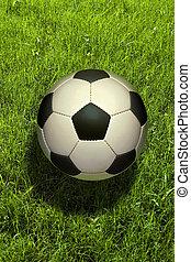Soccer ball - soccer ball on the grass