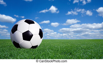 soccer ball  - Classic soccer ball on grass with copy space