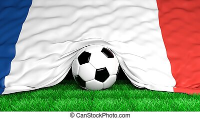 Soccer ball with French flag on football field closeup
