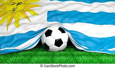 Soccer ball with Uruguayan flag on football field closeup