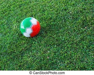 soccer bold, hos, italiensk, tricolor, græsset, i, en, felt