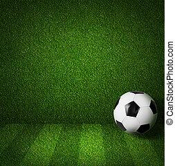 soccer, eller, fodbold spille felt, side udsigt, hos, bold