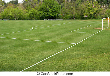 A green grass soccer field lined for play
