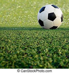 soccer field stadium on the green grass, soccer ball sport game
