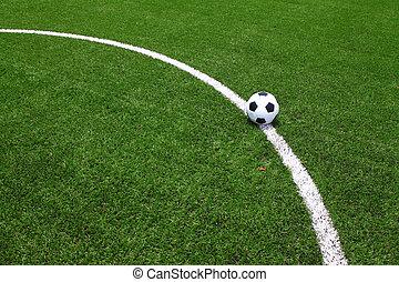 Soccer football field stadium grass