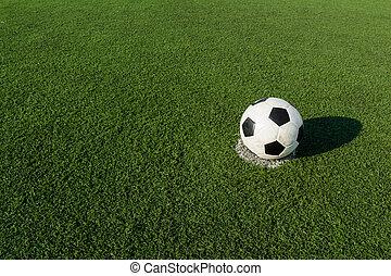soccer football, football on green grass