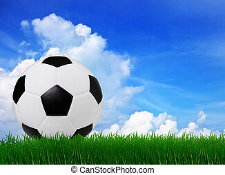 soccer football on green grass sport stadium with copy space u