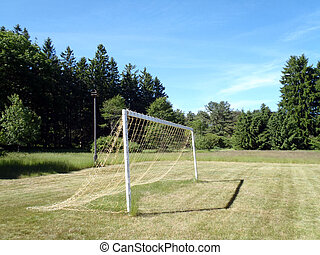 Soccer Goal with net