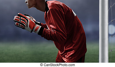 Soccer goalkeeper ready to catch the ball