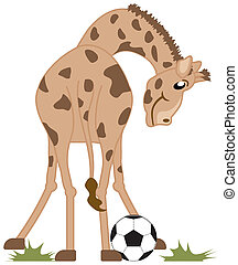 Soccer Playing Giraffe Illustration on White with Clipping Path