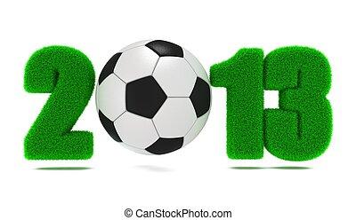 Soccer(Football) 2013.