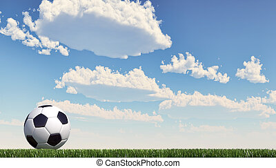 Soccer/football ball close up on grass lawn. Panoramic...