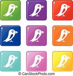 Social network bird set 9