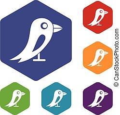 social, rede, jogo, pássaro, ícones