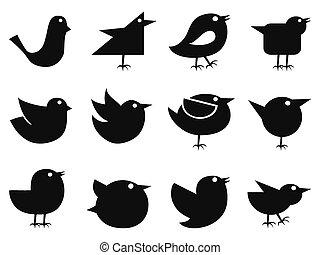 sociale, fugl, iconerne