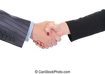 socios, apretón de manos, empresa / negocio