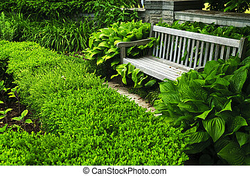 soczysty, zielony, ogród