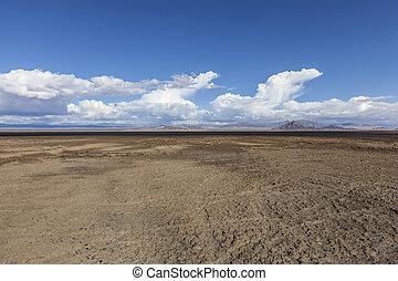 Soda Dry Lake Mud Flats in the Mojave Desert